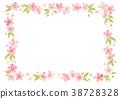 樱花 樱桃树 春天 38728328
