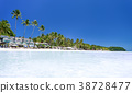 Tropical beach with coconut palm trees 38728477