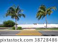 Pedestrian crossing on tropical  road 38728486