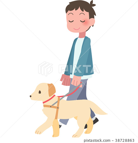 A guide dog and a walking man 38728863