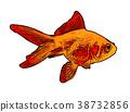 gold fish illustration 38732856