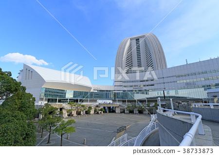 파시 피코 요코하마 국립대 홀 38733873