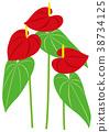 vegetation, vegetative, foliage 38734125