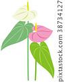 관엽 식물, 잎, 이파리 38734127