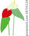 foliage, plant, leaf 38734129
