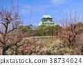 오사카 성 매화 원 38734624