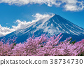 Fuji mountain and cherry blossoms in spring, Japan 38734730