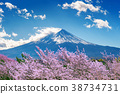 Fuji mountain and cherry blossoms in spring, Japan 38734731