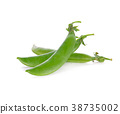 Green beans isolated on white background. 38735002