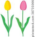 花朵 花卉 花 38735066