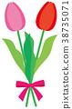꽃, 플라워, 튤립 38735071