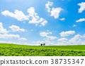 【홋카이도】 자연 이미지 38735347
