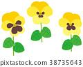 花朵 花卉 花 38735643
