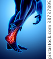 Ankle painful - skeleton x-ray. 38737895