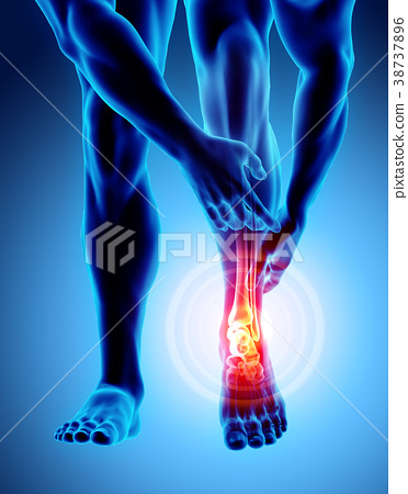 Ankle painful - skeleton x-ray. 38737896