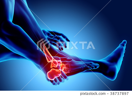 Ankle painful - skeleton x-ray. 38737897