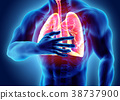 3d illustration of Lungs and chest painful. 38737900