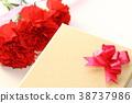 카네이션, 꽃, 플라워 38737986
