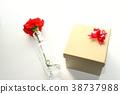 카네이션, 꽃, 플라워 38737988