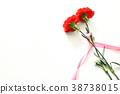 카네이션, 꽃, 플라워 38738015