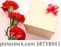 카네이션, 꽃, 플라워 38738041