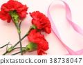 카네이션, 꽃, 플라워 38738047