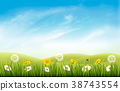 Nature background with grass and flowers 38743554