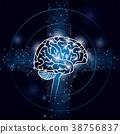 大腦 頭腦 電路 38756837