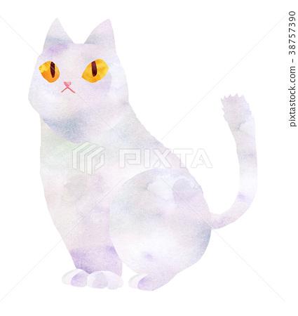 White cat 38757390