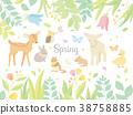 봄의 동물 일러스트 38758885