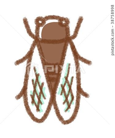แมลง,แมง,ฤดูร้อน 38758998
