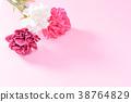 母亲节 康乃馨 五月 Mother's Day Carnation 母の日 カーネーション 花束 38764829