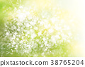 Vector green, spring  background. 38765204