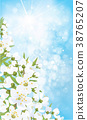 Vector blossoming  spring background. 38765207