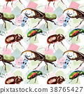Exotic beetles wild insect pattern in a watercolor 38765427