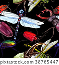 Exotic beetles wild insect pattern in a watercolor 38765447