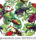 Exotic beetles wild insect pattern in a watercolor 38765519