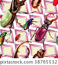 Exotic beetles wild insect pattern in a watercolor 38765532