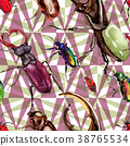 Exotic beetles wild insect pattern in a watercolor 38765534
