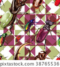 Exotic beetles wild insect pattern in a watercolor 38765536