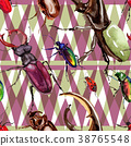 Exotic beetles wild insect pattern in a watercolor 38765548