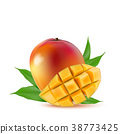 fruit, mango, vector 38773425