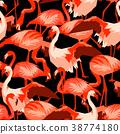 flamingo, tropical, vector 38774180