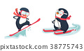 penguin winter sport set 38775743