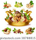 Vector 3d realistic set of different nuts 38788815