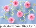 거베라, 꽃, 플라워 38791515
