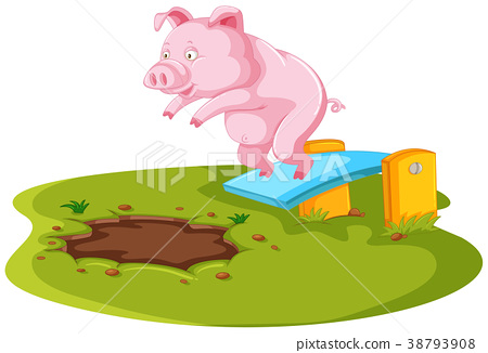 Pig jumping in muddy puddle 38793908