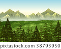 Background scene pine forest 38793950