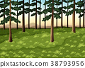 Background scene with trees in forest 38793956