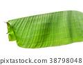 Green leaf banana isolated on white background  38798048